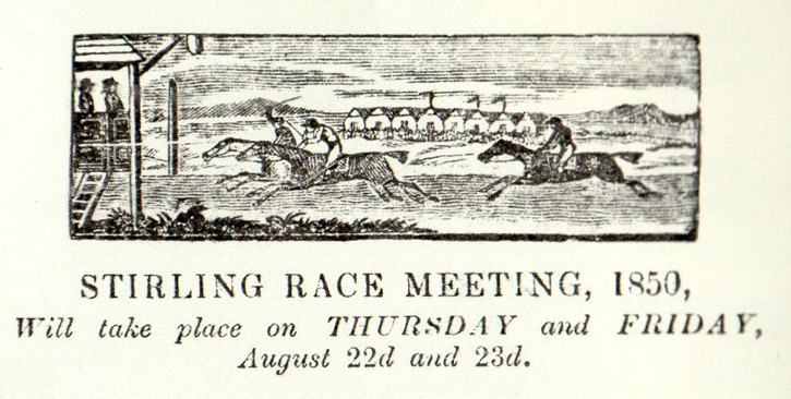 stirling racecourse
