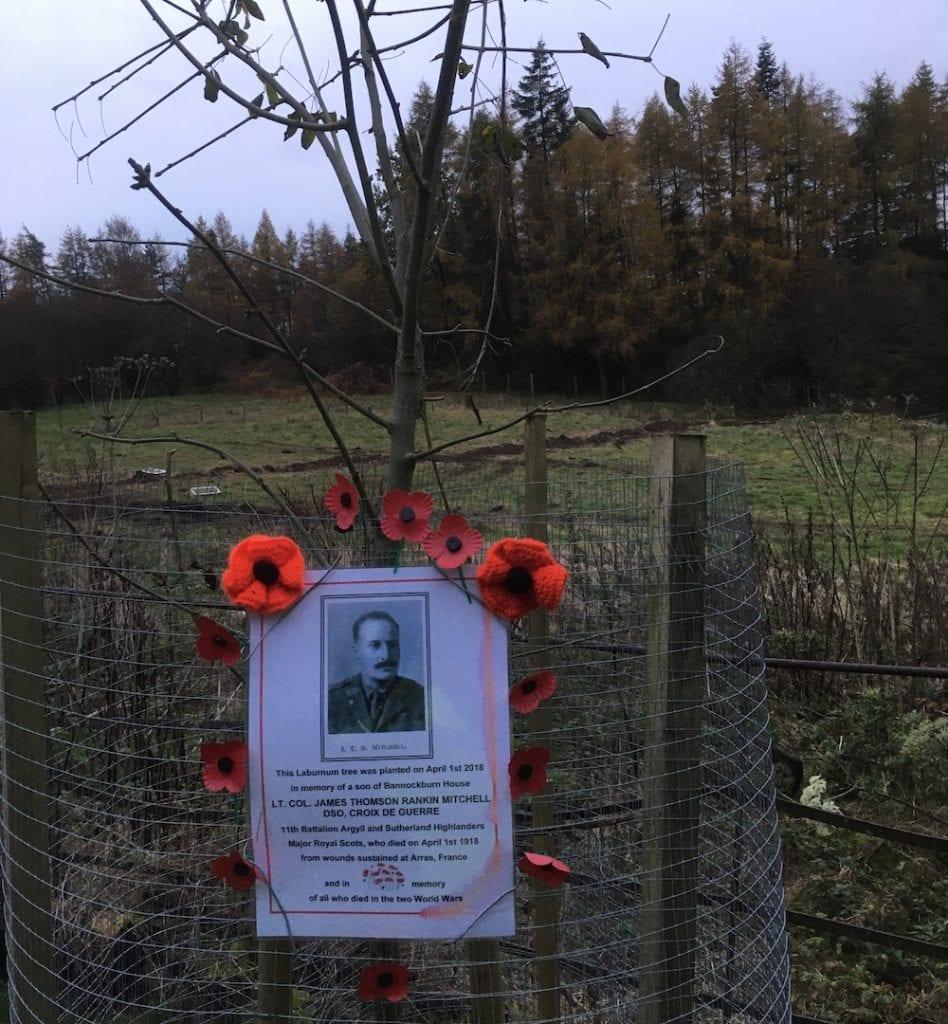 Laburnum Tree Memorial